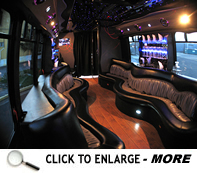 Click image to enlarge the Motor Coachbus Limo Bus